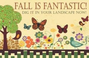 Fall is Fantastic