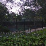 Gillson-Park-Tennis-Courts
