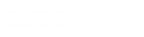 LLC logo transparent502x130 white